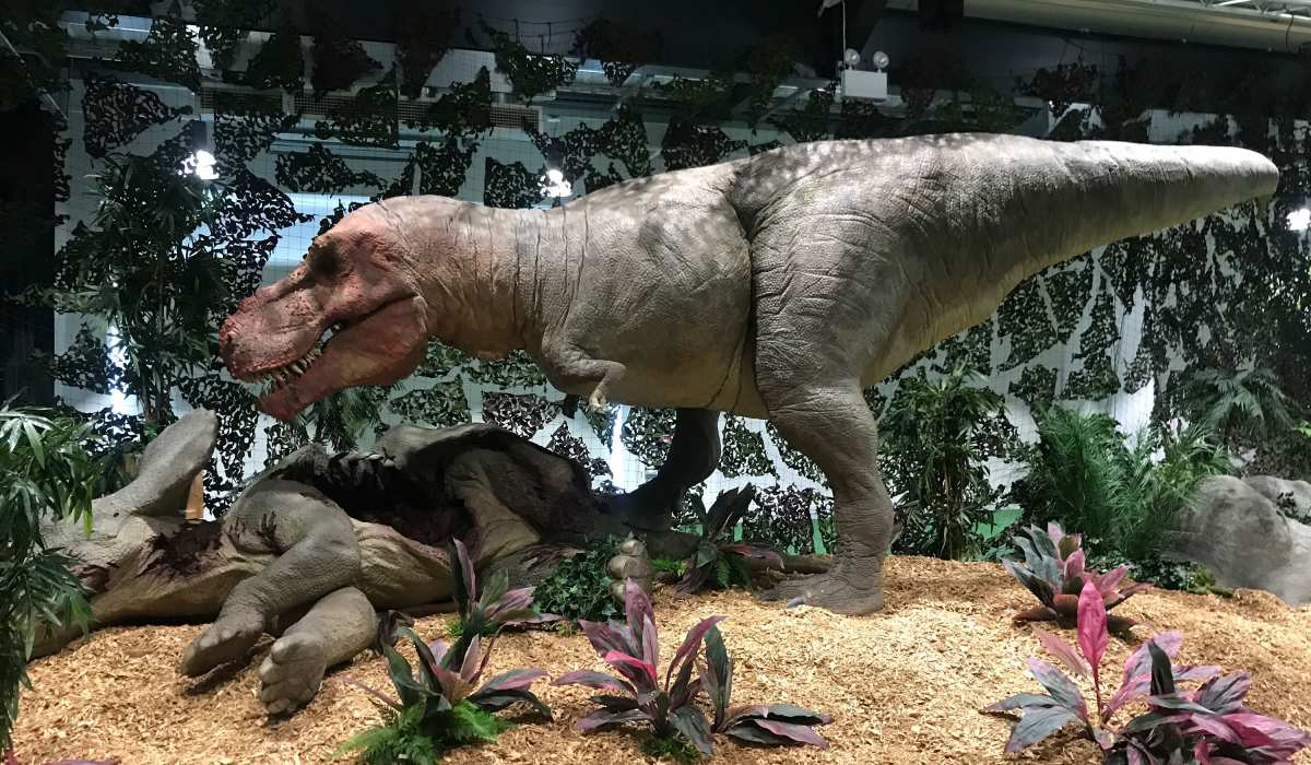 Animatronic dinosaurs brought to life with compressed air